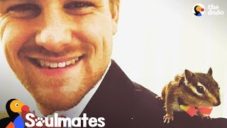Guy Rescues A Baby Chipmunk And Becomes His Best Friend | The Dodo Soulmates