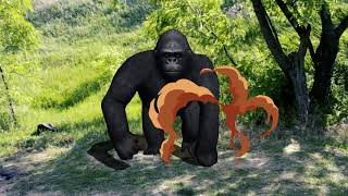 Learn Animals Names and Sounds for Kids | Spiderman w Gorilla Finding Colors Cage Gorilla 2