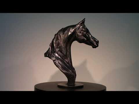 Arabian horse by Erwin Peeters