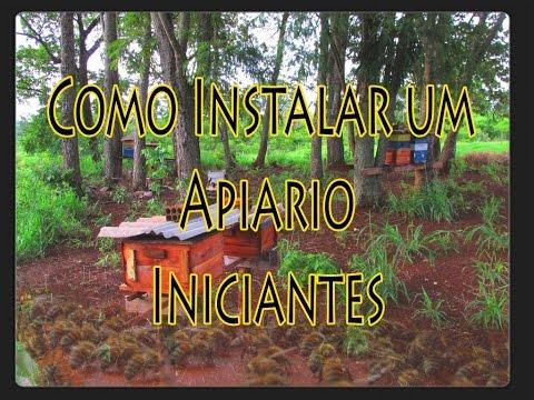 , title : 'Como Instalar um Apiário. P/Iniciantes!!