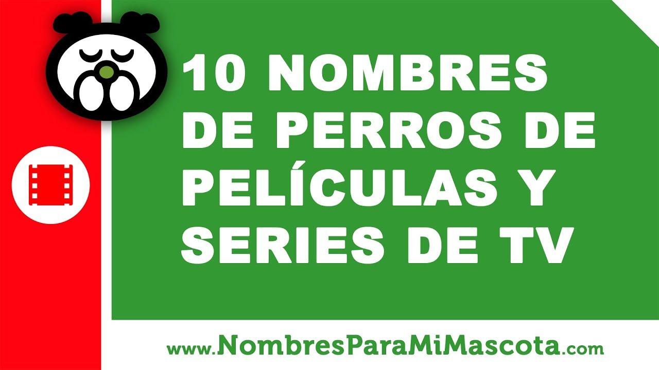 10 nombres de perros de películas y series de TV - nombres de mascota - www.nombresparamimascota.com