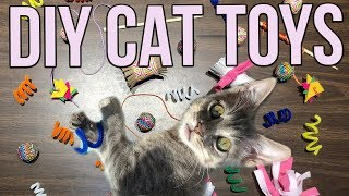5 Easy Cat Toys Kids Can Make At Home!