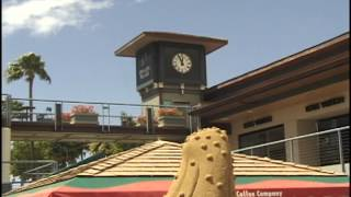 preview picture of video 'Whaler's Village Hawaii Sand Castle'