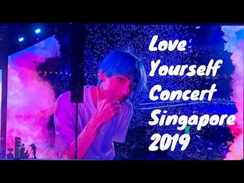 My Full BTS CONCERT Experience Movie - LOVE YOURSELF WORLD TOUR SINGAPORE 2019 | V LIFESTYLE TV