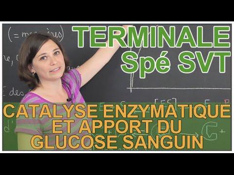 Carottes crues améliore la glycémie