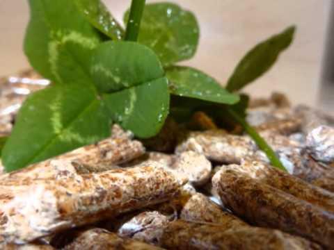 Pašalinti riebalų granules