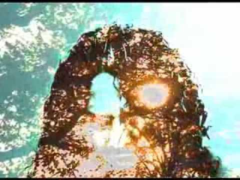 ParadeMarche - Obraz plný slunečnic