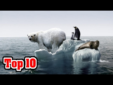 Top 10 Reasons Why CLIMATE CHANGE Is NO LONGER A Debate