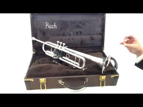 Bach Stradivarius Model 37 trumpet review
