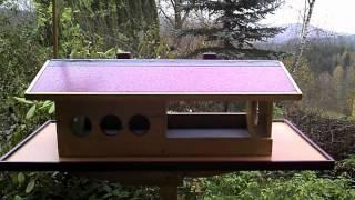 Winter   Futterhaus Für Wildvögel Selber Bauen