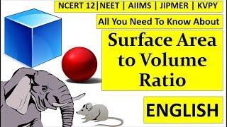 Surface Area To Volume Ratio |NEET | AIIMS | JIPMER | KVPY |