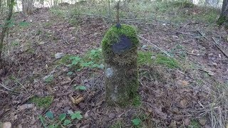 Я думал это пень во мху. Но на нем ЗНАК и НАДПИСЬ! Что я нашел в лесу?