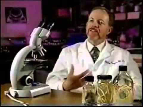 Condiloame în vagin cu colposcopie