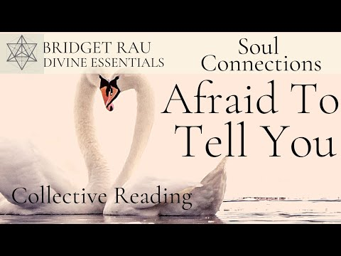 Afraid To Tell You.. Soul Connections Reading
