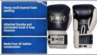 Windy Muay Thai Safety Gloves - MAEQD.com