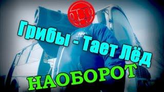 КЛИП наоборот - Грибы - Тает Лёд (KinoMost)