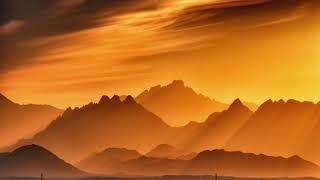 Amadori - Sunrise
