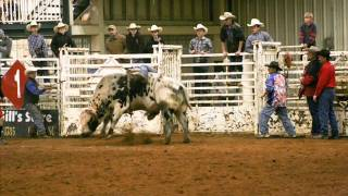 hooked on an eight second ride by chris ledoux