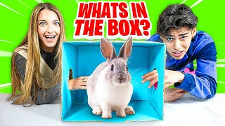 WHAT'S IN THE BOX CHALLENGE  | Lexi Rivera & Andrew Davila