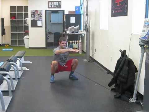 Cable Hip Belt Squats