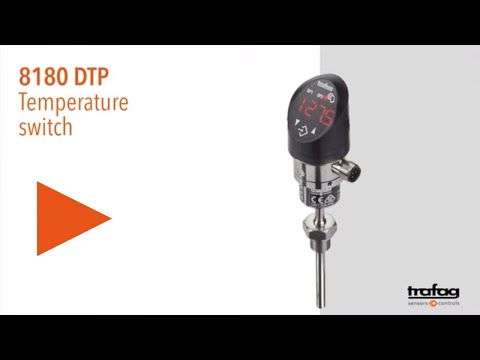 Temperature switch with display DTP 8180