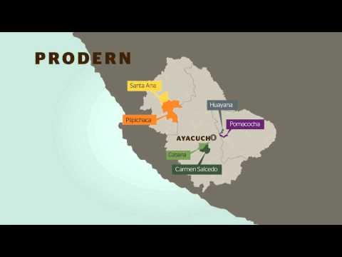 Presentación animada del Prodern