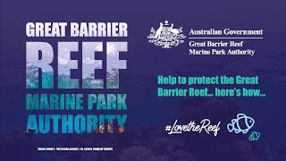 Here's how you can protect the Great Barrier Reef