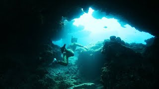 Found Sea Turtles in Hawaii Underwater in Caves! (Beware of Sharks) | DALLMYD - Video Youtube