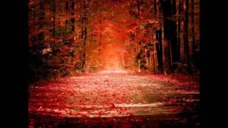 Track 9 from Mirage - Virtual Friend - Armin Van Buuren