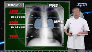 医療動画ケアネットDVDDr長尾の胸部X線ルネッサンスサンプル動画
