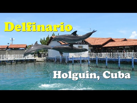 Delfinario (dolphinarium) Bahia de Naranjo, Holguin, Cuba