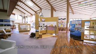 JAL 週末ふるさとTrip 北海道~鶴居村~ 阿寒摩周国立公園の大自然を学ぶ「川湯エコミュージアムセンター」 人気の癒しスポット「川湯温泉街の足湯」