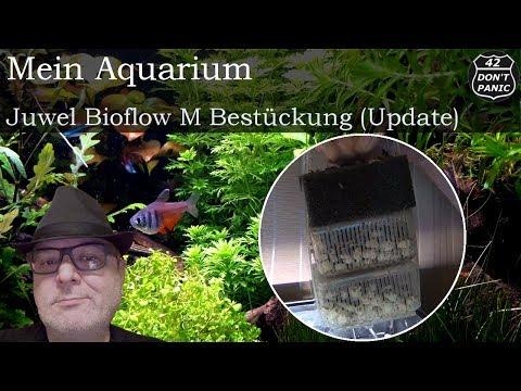 Juwel Bioflow M - Bestückung (Update)   Mein Aquarium 50