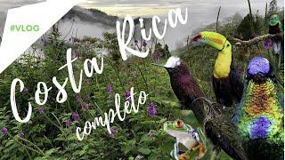 Passarinhando na COSTA RICA- Viagem COMPLETA em todos os detalhes