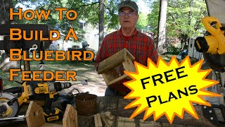 How to Build a Bluebird Feeder