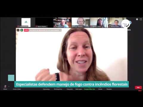 Especialistas defendem manejo de fogo contra incêndios florestais - 26/11/20