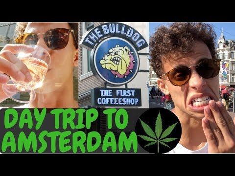 WHAT TO DO IN AMSTERDAM IN ONE DAY | WEED & BOOZE | TRAVEL VLOG