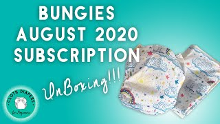 Bungies Cloth Diaper Subscription Box: Unboxing The August 2020 Box
