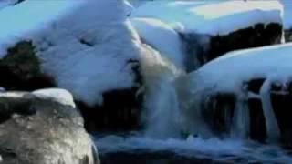 Vivaldi - La Primavera (Spring) - Concerto No. 1 in E major - Movements 1-3