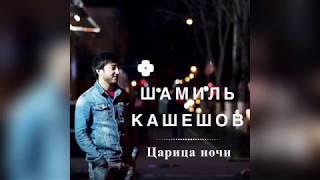 Шамиль Кашешов - Царица ночи (Премьера песни, 2018)