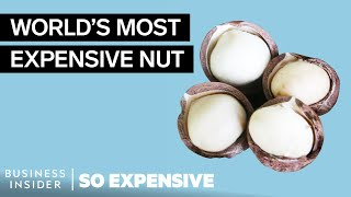 Why Macadamia Nuts Are So Expensive | So Expensive