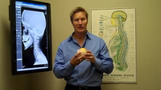 Trevo's Amazing Health Secrets