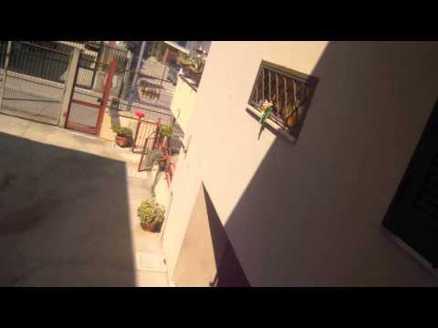 Scaricare film del 2008 Sex and the City