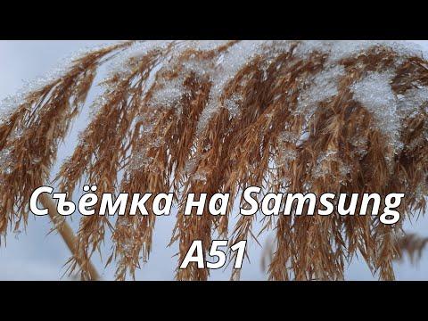 Декабрь. Видео о природе. Съёмка на телефон  Samsung Galaxy A51