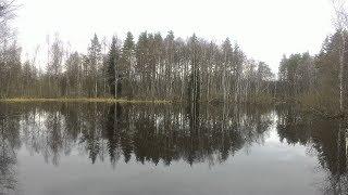 Весенняя Природа Карелии и пробная Рыбалка (03.05.18)