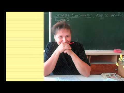Шуточное видео на день учителя