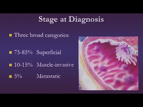 Rückmeldungseinrichtung für Prostata-Behandlung