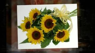 Wholesale Flowers - Dallas, Texas