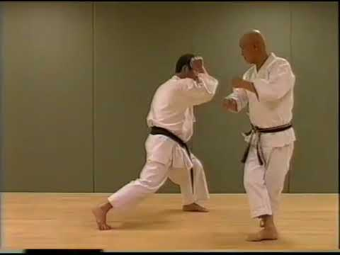 Wado Ryu Karate-do  Kihon
