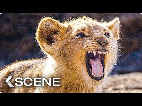 Baby Simba practice to Roar Scene - THE LION KING 2019)